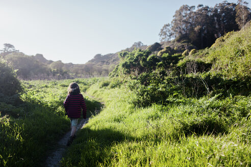 Rear view of boy walking at trail amidst grassy field against clear sky during sunny day - CAVF13626