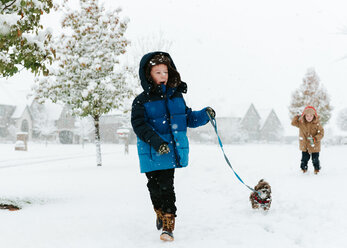 Boy with Shih Tzu walking on snow covered field while brother standing in background - CAVF14568