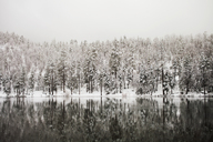Snow covered trees by lake against sky - CAVF15213