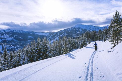 Rear view of female hiker hiking on snowy field - CAVF15285