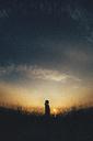 Silhouette girl standing on grassy field against sky during sunset - CAVF15629