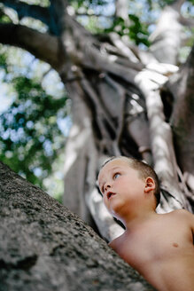 Low angle view of shirtless thoughtful boy looking up while standing by tree at park - CAVF16025