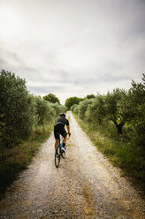 Rear view of man cycling on road amidst trees against sky - CAVF16082