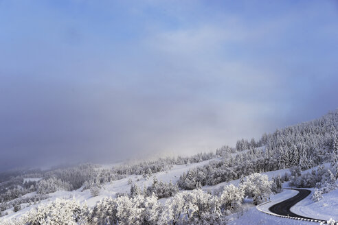 Mountain road amidst snow covered pine trees against cloudy sky - CAVF16238