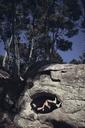 Woman lying in rock against trees - CAVF16638