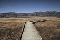 Wooden boardwalk on grassy field against mountains at Mammoth Lake Hot Springs - CAVF16701