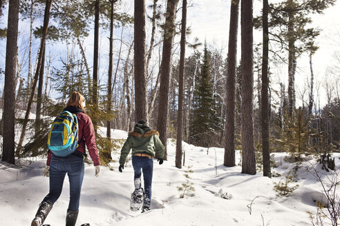 Rear view of male and female hikers walking in forest during winter - CAVF17010