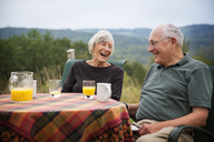 Happy senior couple sitting at table in lawn - CAVF17163
