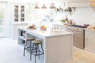 Luxury home showcase kitchen - CAIF20213