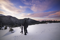 Rear view of skier walking on snowy mountain - CAVF17915