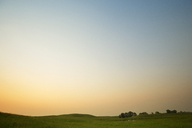 Scenic view of grassy field against clear sky during sunset - CAVF18674