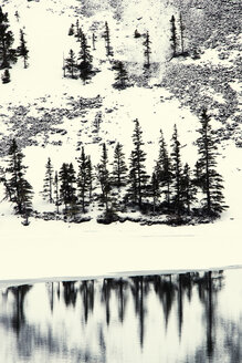 Trees on snowcapped mountain by lake - CAVF20123