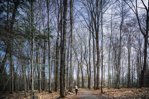 Mid distance view of girl standing on footpath at forest during autumn - CAVF20180