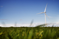 Wind turbine on grassy field against blue sky - CAVF22658