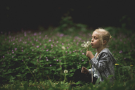 Girl blowing dandelions while sitting on field at park - CAVF22970