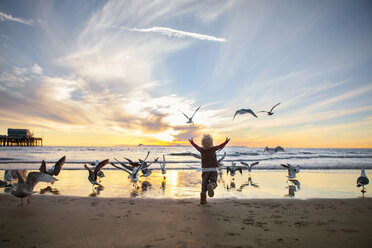 Rear view of girl playing with seagulls at beach against sky during sunset - CAVF23513