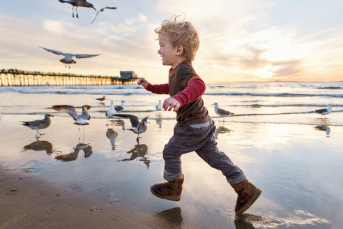 Happy girl playing with seagulls at beach against sky during sunset - CAVF23516