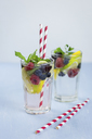 Infused water with fresh berries, raspberry, blueberry, blackberry, mint and lime - JUNF01026