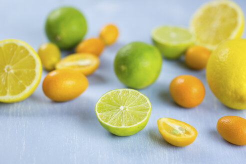 Limes, lemons and kumquats - JUNF01029
