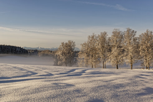 Germany, Bavaria, Geretsried, winter landscape in the morning - LHF00546
