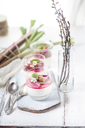 Glasses of Panna Cotta with roasted rhubarb - SBDF03489