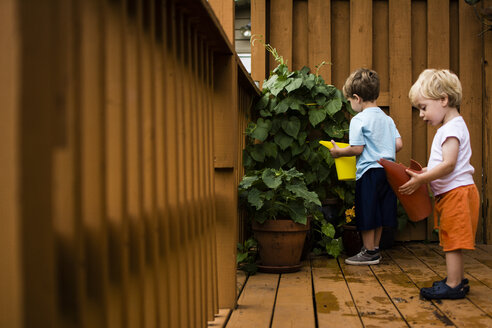 Brothers watering plant while standing in porch - CAVF24744