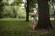 Boy with stick standing on tiptoe by tree trunk - CAVF24762