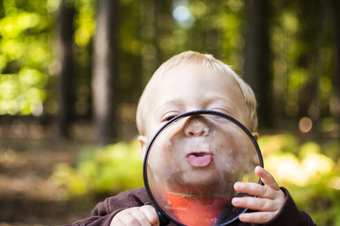 Close-up of boy holding magnifying glass while standing in forest - CAVF24771