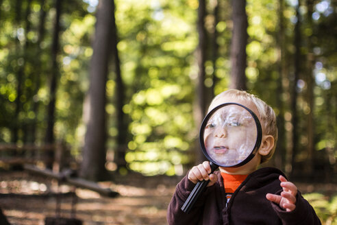 Cute boy looking through magnifying glass while standing in forest - CAVF24774