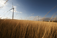 Windmills on grassy field against sky - CAVF24922