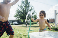Siblings enjoying in yard - CAVF26383