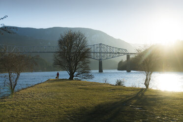 Distant view of hiker with Golden Retriever standing at riverbank by cantilever bridge - CAVF27116