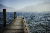 Austria, Salzkammergut, Lake Mondsee, wooden walkway and seagulls in the morning - STCF00578