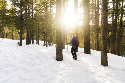 Woman with ski poles walking in snow covered forest - CAVF27271