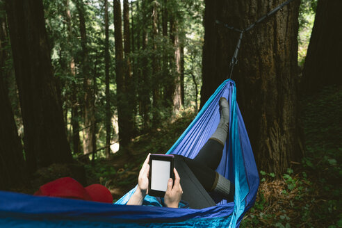 Woman using tablet computer while lying on hammock in forest - CAVF27277