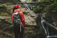 Rear view of woman with backpack standing by stream in forest - CAVF27286
