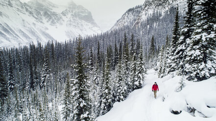 High angle view of hiker walking on snow covered field at forest - CAVF27322