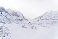 Mid distance view of hiker standing on snow covered landscape during foggy weather - CAVF27331