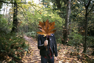 Man holding dry maple leaf in front of face at forest during autumn - CAVF27783
