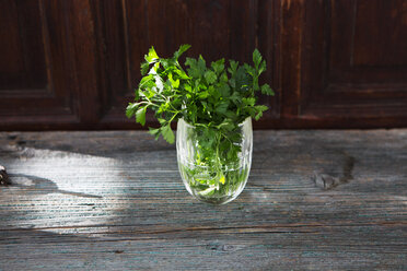 Fresh parsley in glass of water - KSWF01873