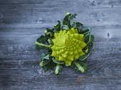 Romanesco broccoli - KSWF01879