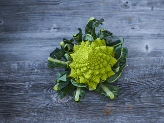 Romanesco broccoli - KSWF01879