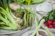 Assortment of vegetables on plates - KVF00125