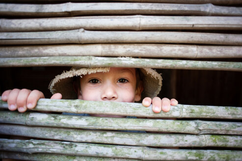 Portrait of boy looking through bamboo fence - CAVF28515
