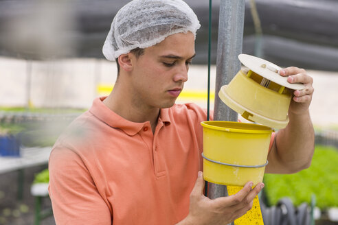Greenhouse worker checking container - ZEF15222