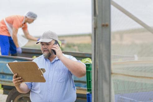 Farm worker talking on the phone - ZEF15231