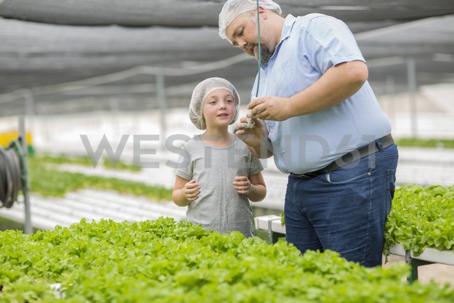 Greenhouse worker and daughter looking at plants - ZEF15234