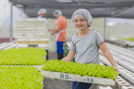Girl helping in greenhouse holding a pallet of plants - ZEF15237