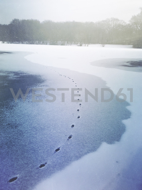 Germany, Cologne, traces in snow on frozen lake - GWF05470