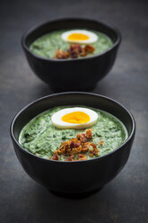 Cream of spinach soup with egg and bacon - LVF06826